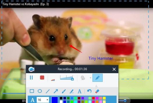 3 - Apowersoft Screen Recorder Pro - Ses Kayıt Programı - Kampanya