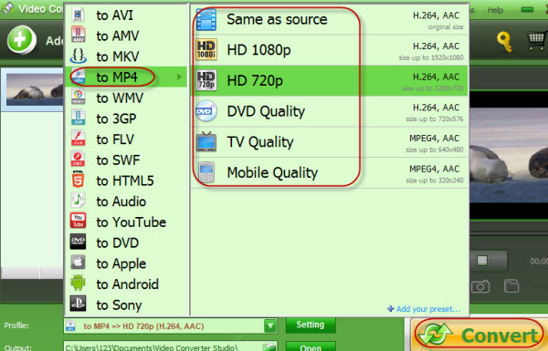 screenshot of converting AVI to MP4 with Video Converter Studio