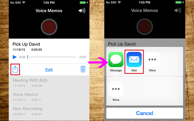 Email voice memo